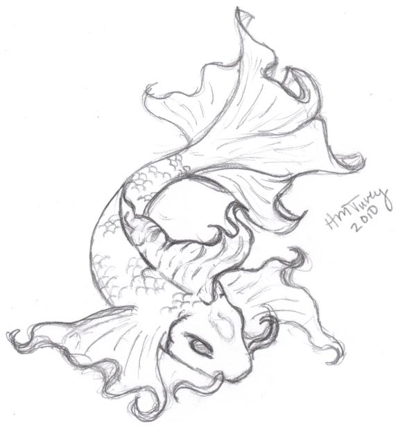 Koi Sketch - Tattoo