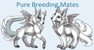 Pure Breeding