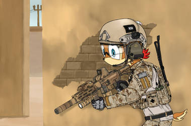 Navy SEAL Sally by DeltaFoxtrot2014