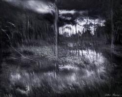 Swamped by Arthur-Ramsey
