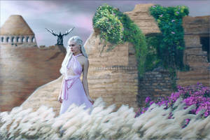 Daenerys Resolve