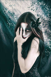 Black Rose by Arthur-Ramsey