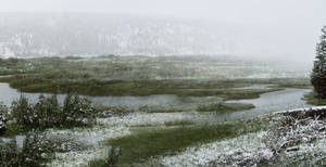 Misty Yellowstone Morning