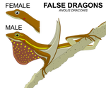 False Dragon