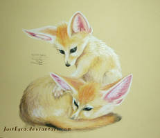 Fennec foxes by JustEyra