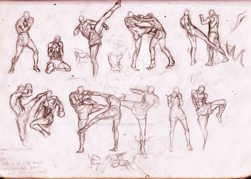 Muay Thai References