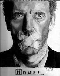 Dr. House by CraigRosenbaum