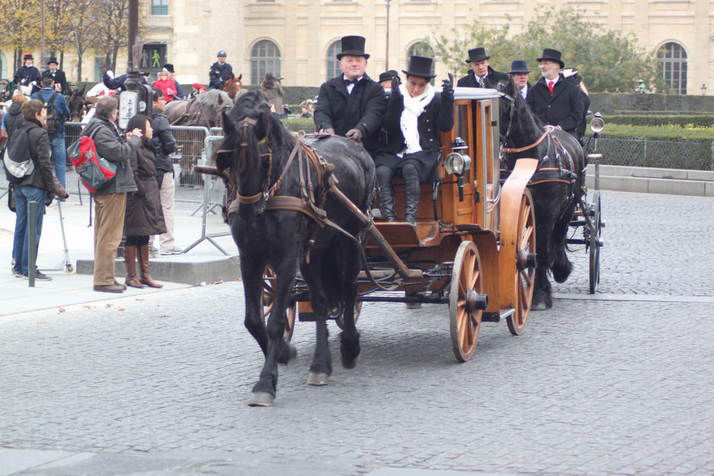 Friesian and carriage