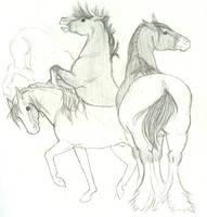 Horses... by Yuri-Kitsune