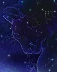 Selene's Cat