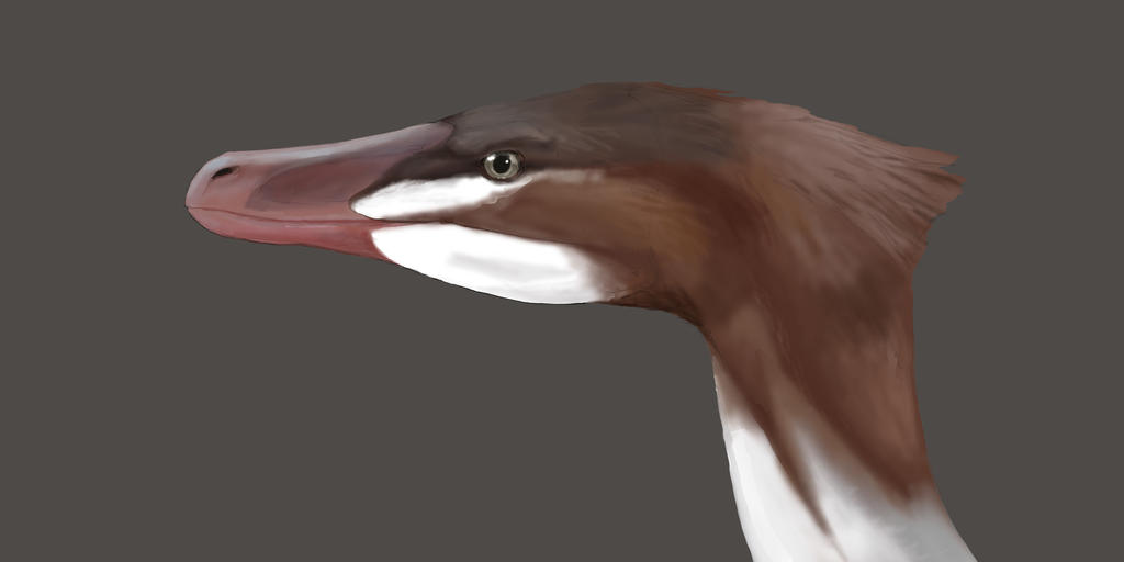 Velociraptor color study by mossoak