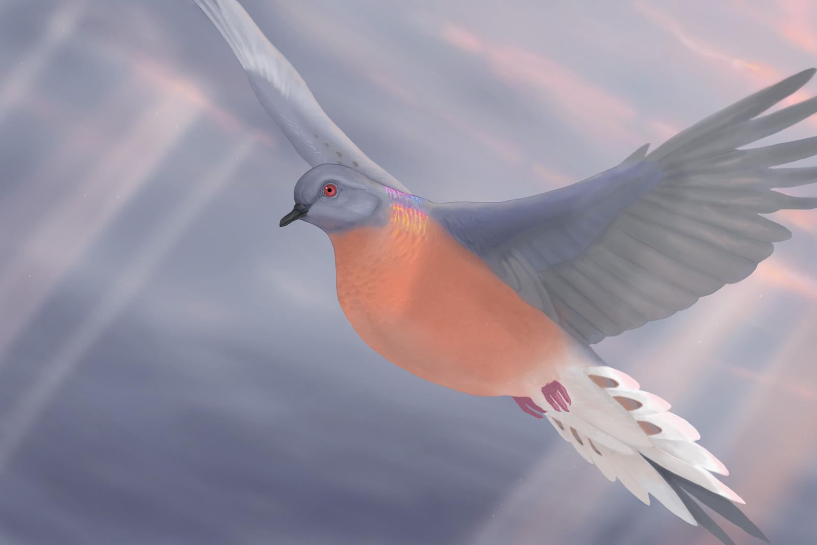 human impact on passenger pigeons Will our human activities unravel the web too much  passenger pigeon specimen residing at millikin university, illinois  a symphony about passenger pigeons.