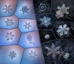 Snowflakes  2012 collage