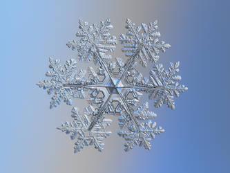 Snowflake 2021-02-11 - 1