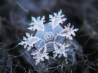 Real snowflake