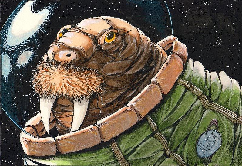 Space Walrus by LaikatheSpaceDog