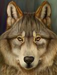 Mr. Wolf close up