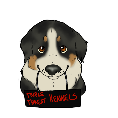 TripleThreatKennels's Profile Picture