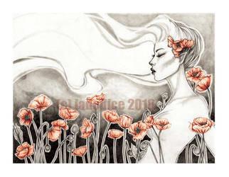 -- poppies -- by jadedice