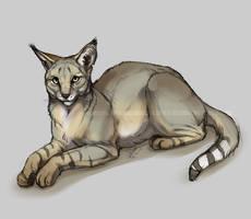 Jungle Cat by Esava
