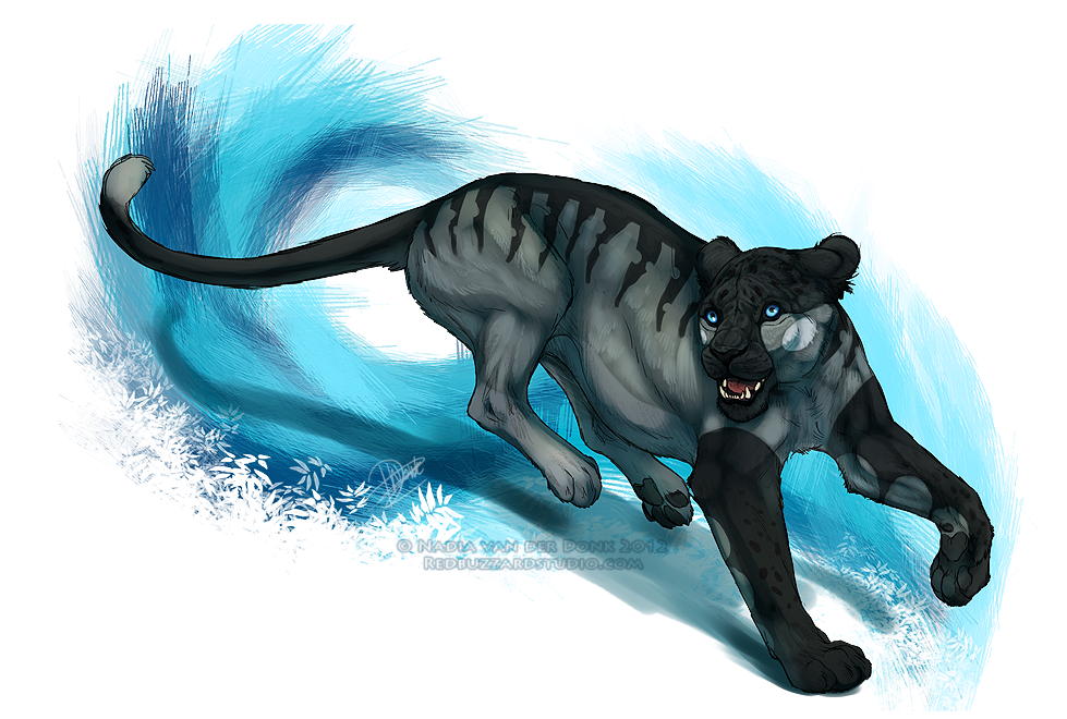 Orca by Esava