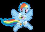 Rainbow Dash: 'Bikinis On Top'