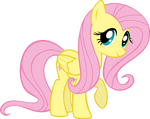 Fluttershy: The Adorable One