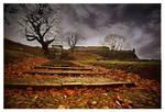 Autumn Colours by JoseMelim