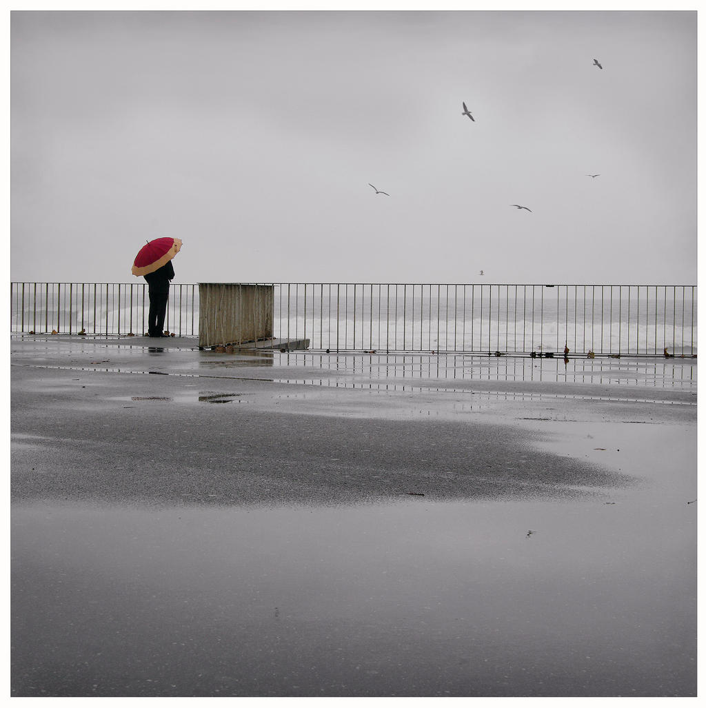 Seaside Contemplation by JoseMelim