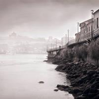 Morning Walk by the Misty River by JoseMelim