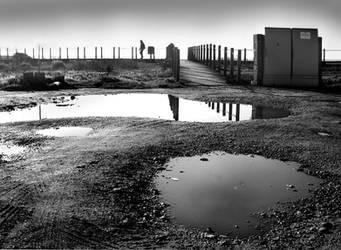 Water Mirrors by JoseMelim