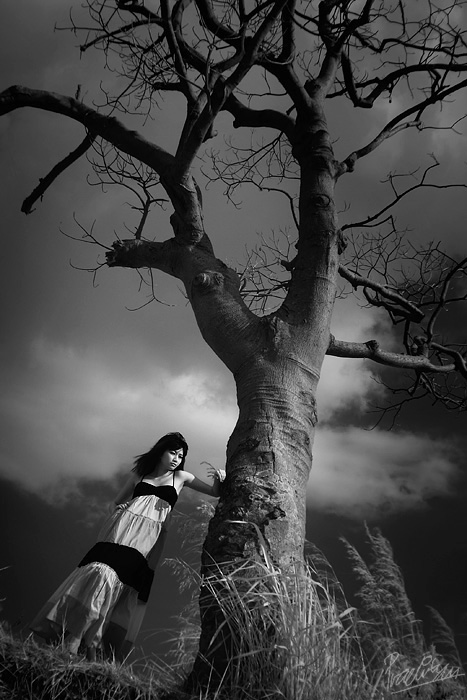 ...Colorless World... by ditya