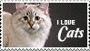 I love cats by StarkArya