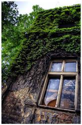 Windowsze