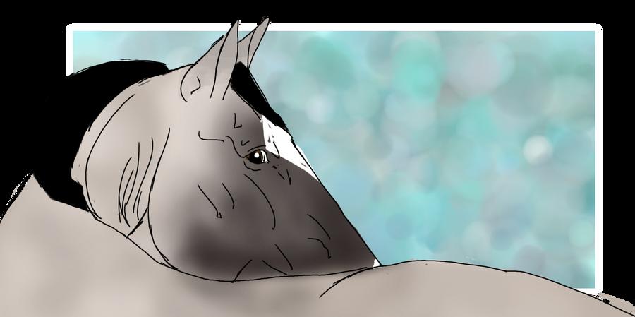 DSS Bunny Kou 2253 by DarkShadowStable
