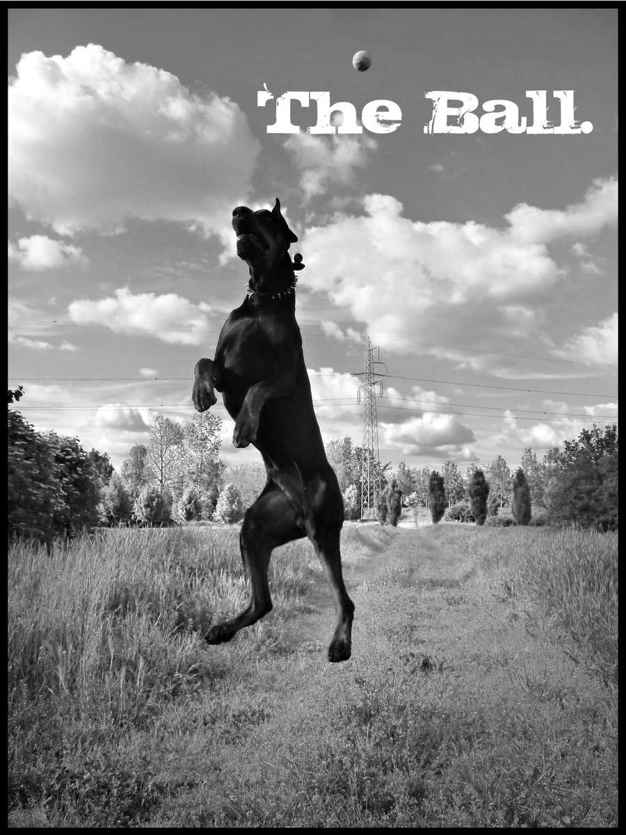 The Ball. by faithandfreedom