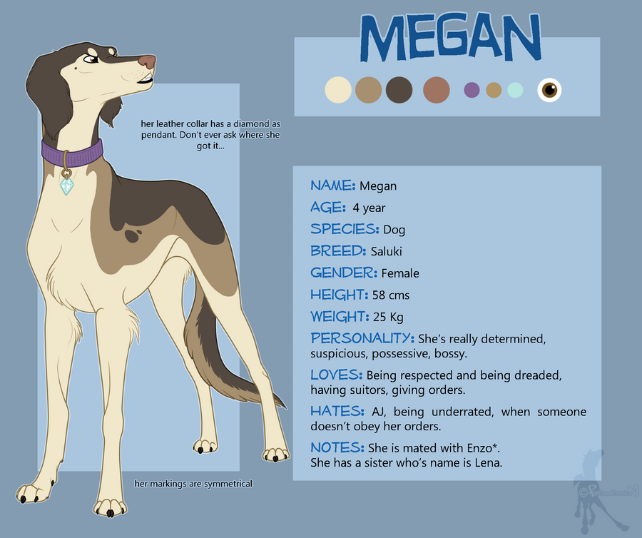 Megan Reference Sheet by faithandfreedom