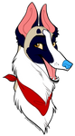 Pilate the Borzoi