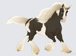Junicorn DAY 3: Gypsy Vanner