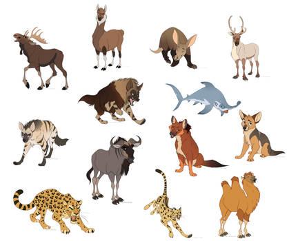 Animal Adoptables