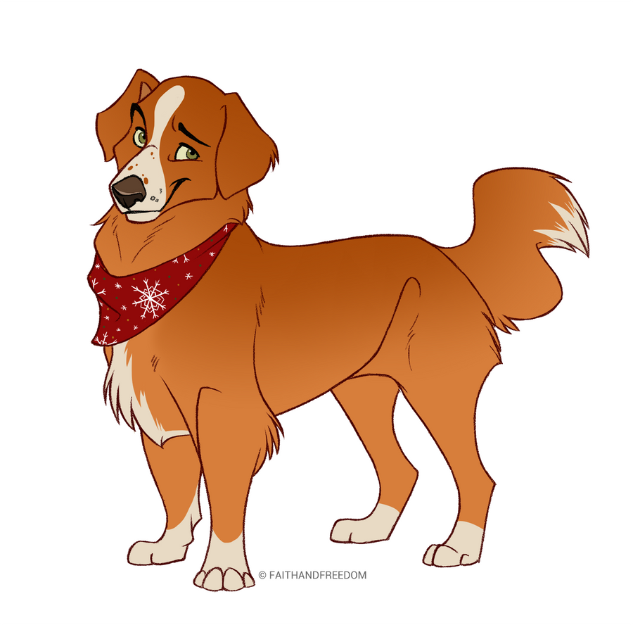 nova_scotia_duck_tolling_retriever_by_faithandfreedom-dbpm5iv.png