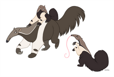 Anteaters by faithandfreedom