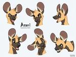 Asani Expressions Study