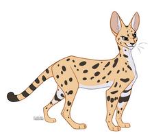 Serval by faithandfreedom