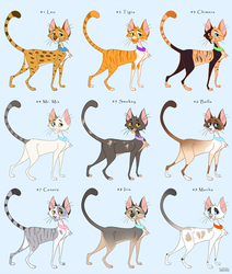 50 USD House Cats Adoptables