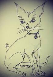 Cat sketch by Arsenid