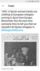 Syrians helping Refugees from Europe