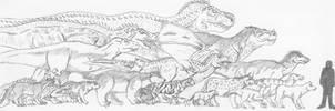 North American Carnivores by spidervenom022