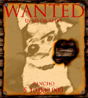 Wanted: Pancho by Avenger1130