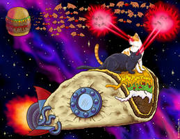 Taco cats in space